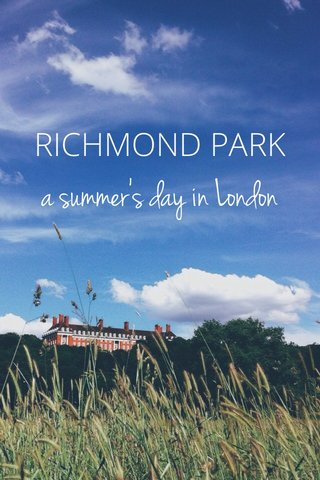 a summer's day in London RICHMOND PARK