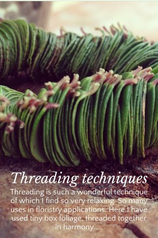 Threading techniques Threading is such a wonderful technique of which I find so very relaxing. So many uses in floristry applications. Here I have used tiny box foliage, threaded together in harmony.....