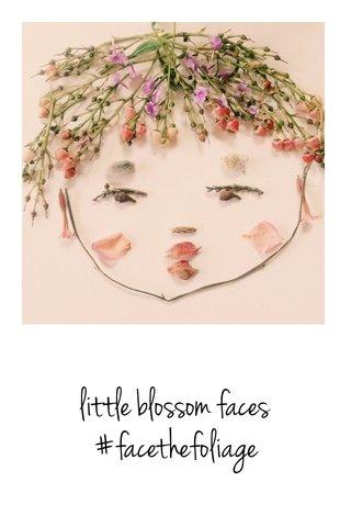 little blossom faces #facethefoliage