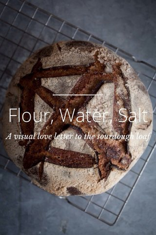 Flour, Water, Salt A visual love letter to the sourdough loaf