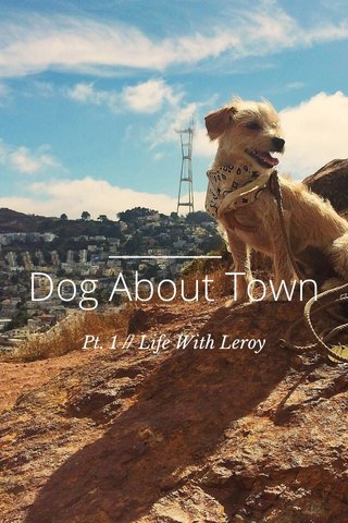 Dog About Town Pt. 1 // Life With Leroy
