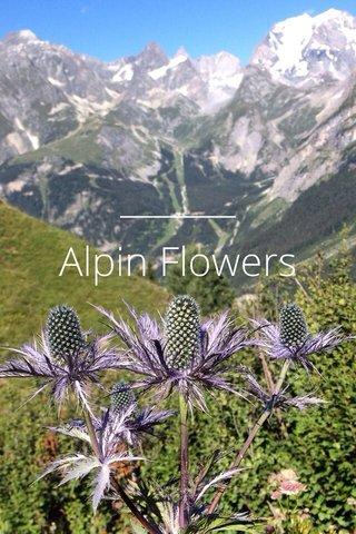 Alpin Flowers