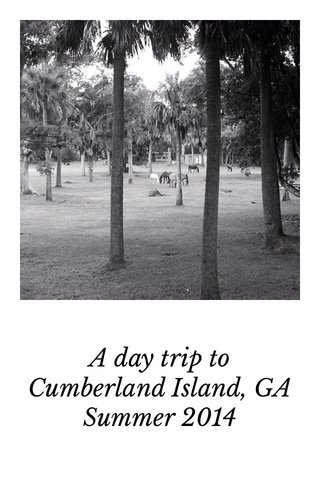 A day trip to Cumberland Island, GA Summer 2014