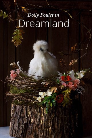 Dreamland Dolly Poulet in