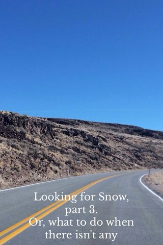 Looking for Snow, part 3. Or, what to do when there isn't any
