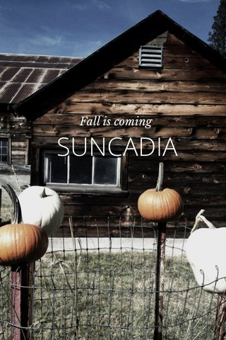 SUNCADIA Fall is coming