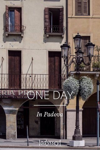 ONE DAY In Padova |odyssey|