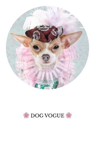 🌸 DOG VOGUE 🌸