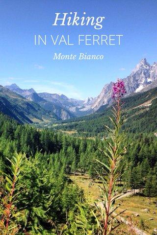Hiking IN VAL FERRET Monte Bianco