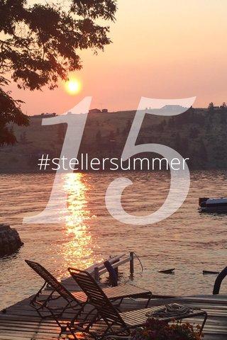 15 #stellersummer