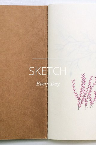 SKETCH Every Day