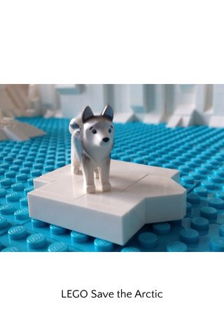 LEGO Save the Arctic