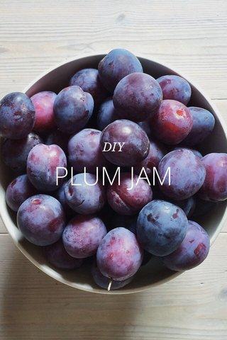 PLUM JAM DIY