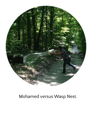 Mohamed versus Wasp Nest.