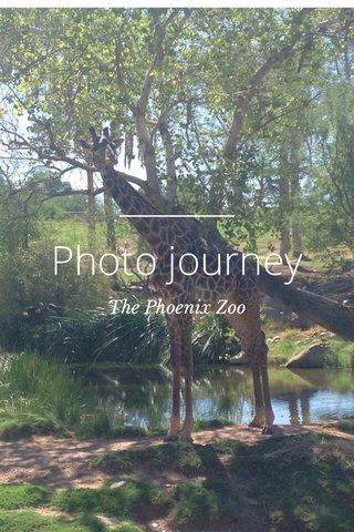 Photo journey The Phoenix Zoo