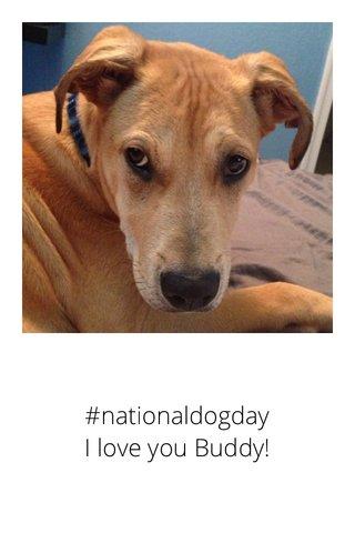 #nationaldogday I love you Buddy!