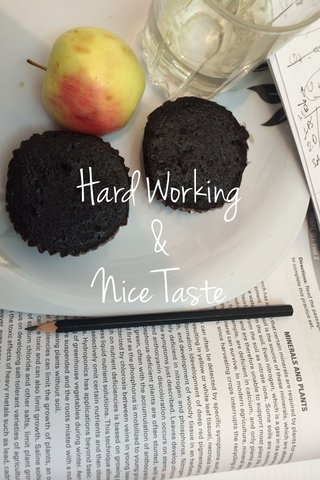 Hard Working & Nice Taste