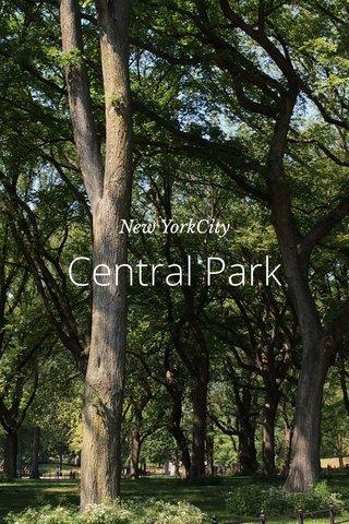 Central Park New YorkCity