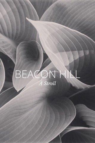 BEACON HILL A Stroll