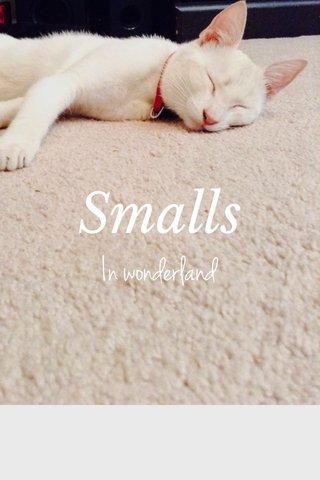 Smalls In wonderland