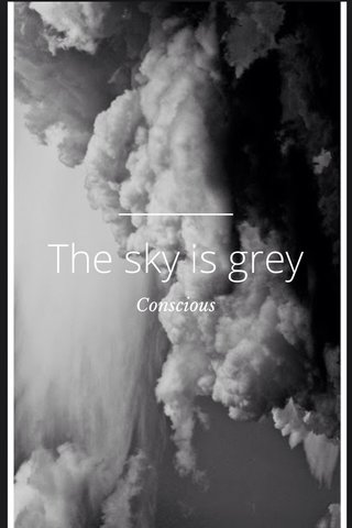 The sky is grey Conscious