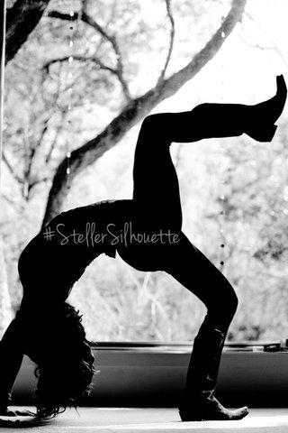 #StellerSilhouette