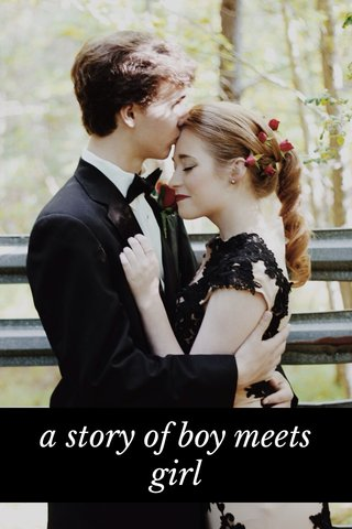 a story of boy meets girl