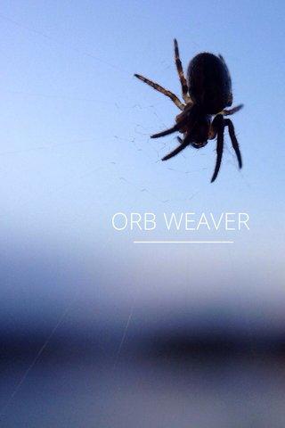 ORB WEAVER