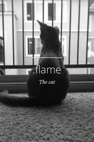 .flame The cat