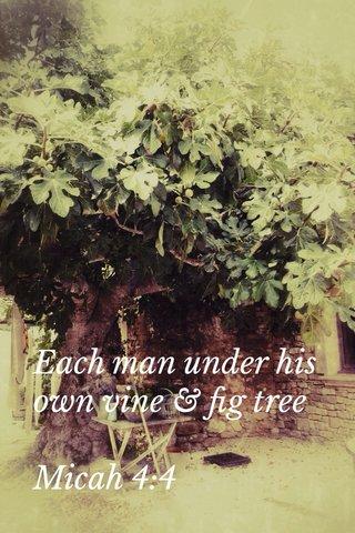 Each man under his own vine & fig tree Micah 4:4