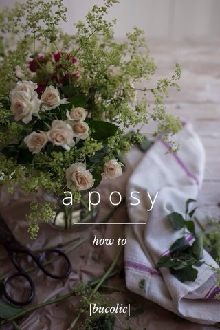 a posy how to |bucolic|