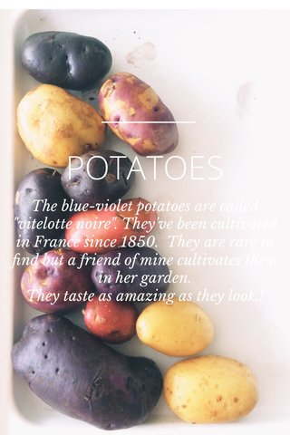 "POTATOES The blue-violet potatoes are called ""vitelotte noire"". They've been cultivated in France since 1850. They are rare to find but a friend of mine cultivates them in her garden. They taste as amazing as they look.!"