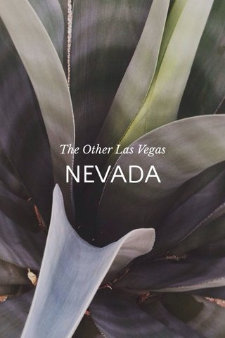 NEVADA The Other Las Vegas