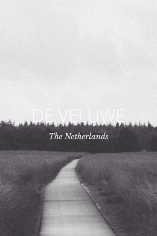DE VELUWE The Netherlands