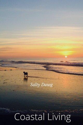 Coastal Living Salty Dawg