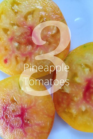 3 Pineapple Tomatoes