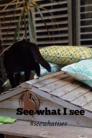 See what I see #seewhatisee
