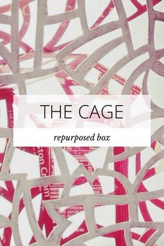 THE CAGE repurposed box