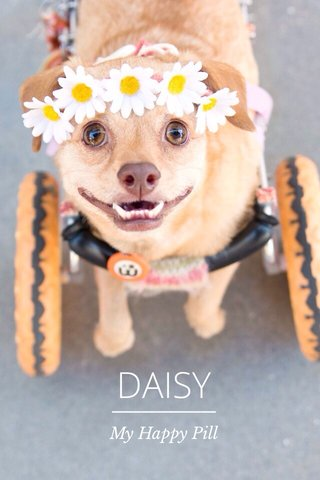DAISY My Happy Pill