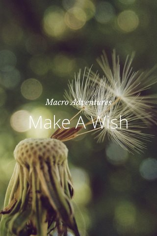 Make A Wish Macro Adventures