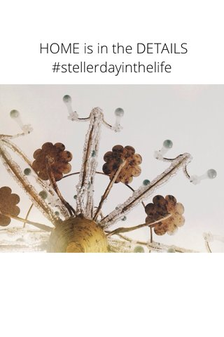 HOME is in the DETAILS #stellerdayinthelife