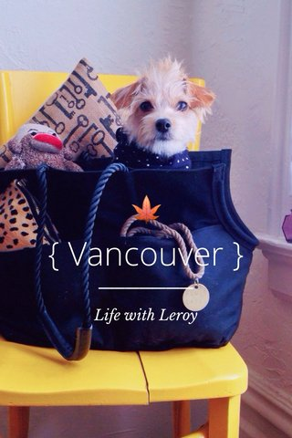 🍁 { Vancouver } Life with Leroy