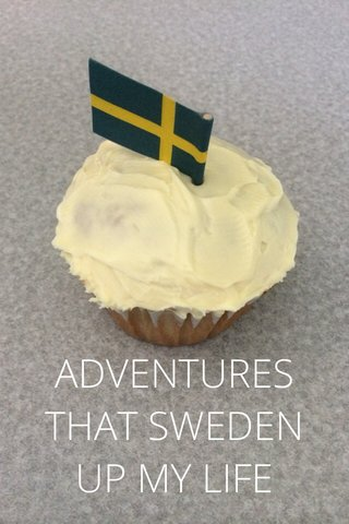 ADVENTURES THAT SWEDEN UP MY LIFE