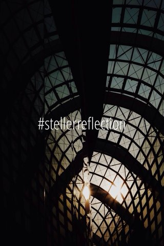 #stellerreflection