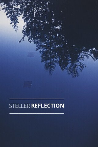 STELLER REFLECTION