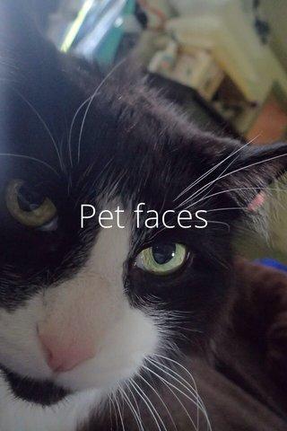 Pet faces