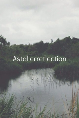 #stellerreflection