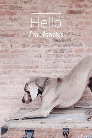 Hello I'm Aquiles