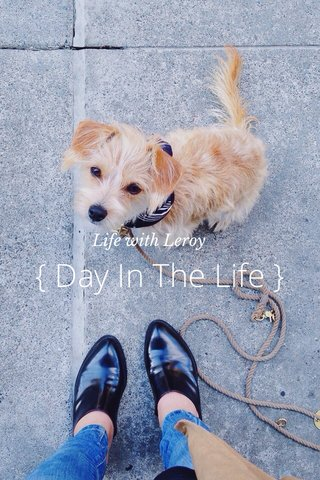 { Day In The Life } Life with Leroy
