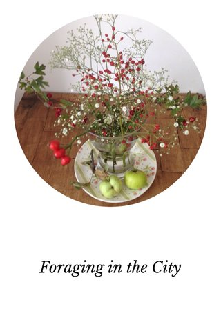 Foraging in the City